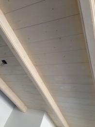 plafondaf1